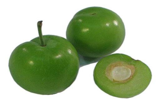 هسته این میوه خوشمزه سیانور دارد